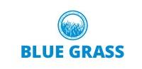 Blue Grass projektowanie ogrodów